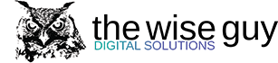 The Wise Guy Digital Solutions